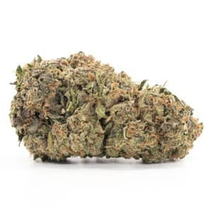 northern light best indica weed info