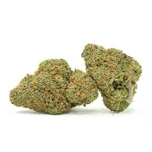 bulk weed weed deals dispensary