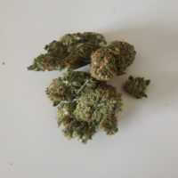 king-louis-XIII-weed