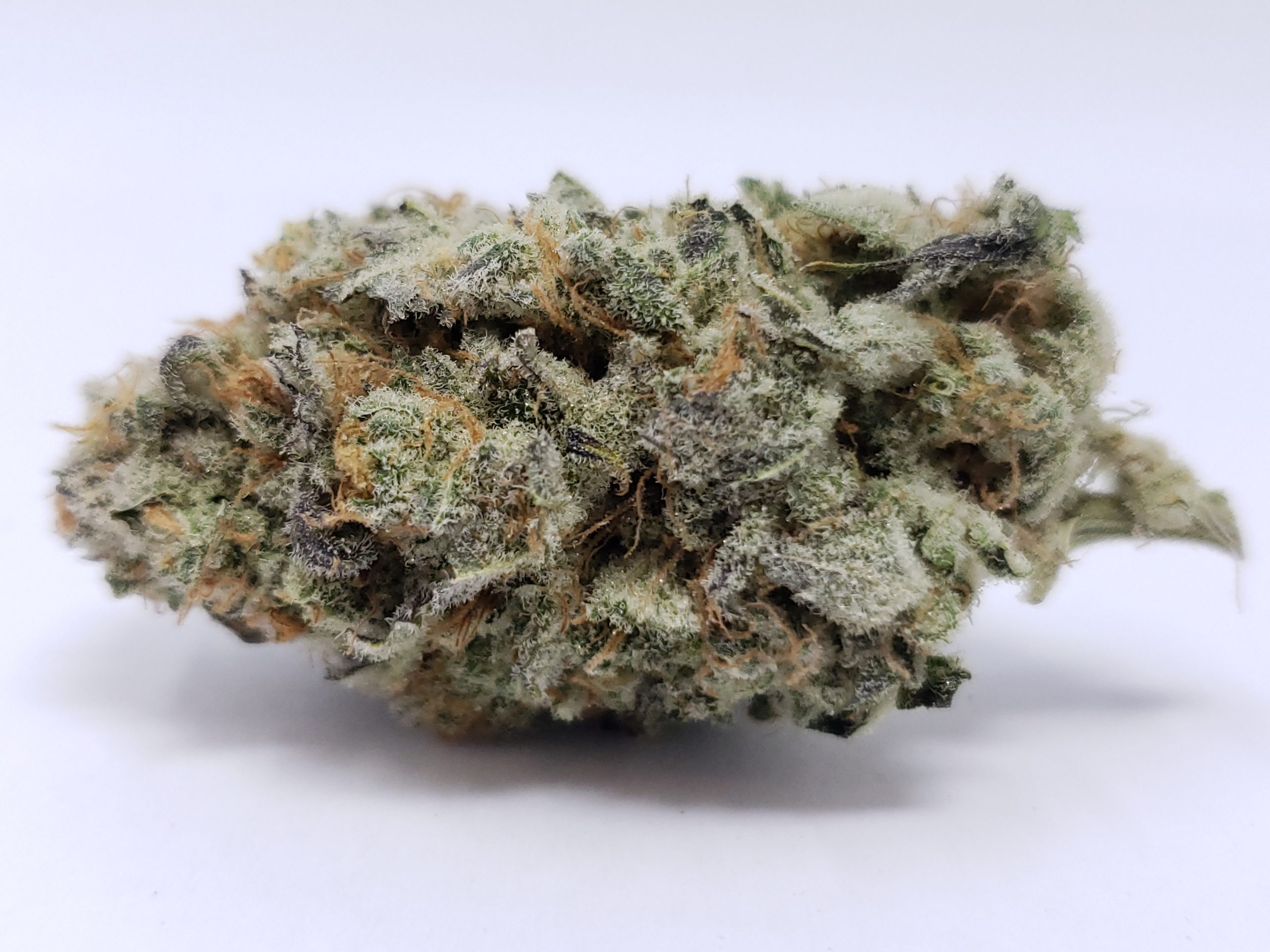BuyWeed247 Online Dispensary