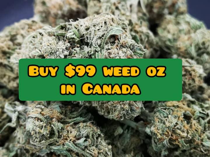 cheap 99 dollar weed ounce