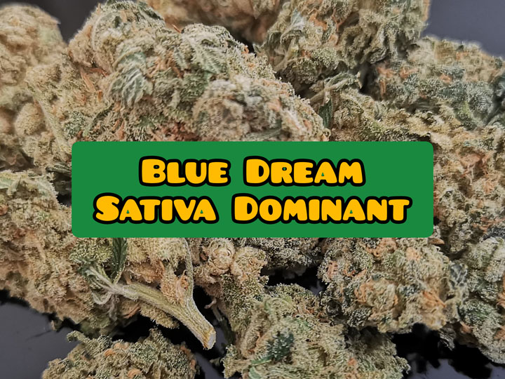 blue dream weed strain review