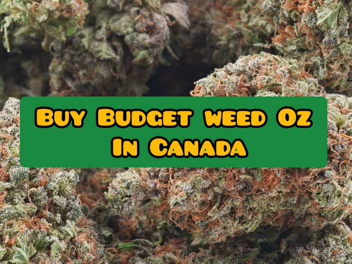 buget weed ounces canada