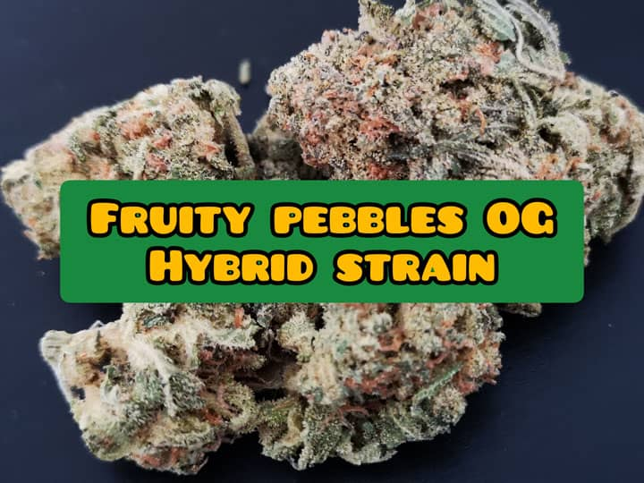 fruity pebble og review infos