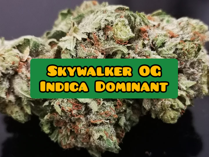 skywalker og weed strain review