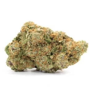 best strain canada girl scout cookies