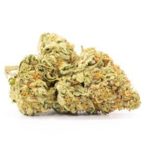 best strain canada og kush