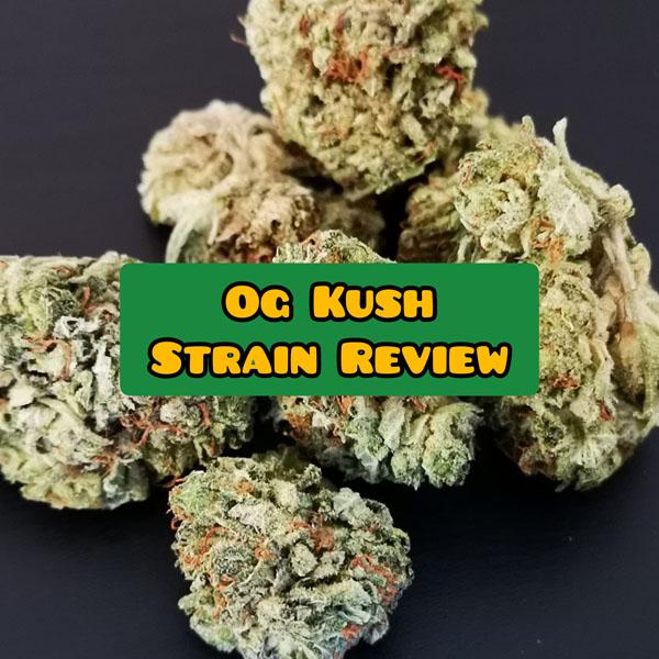 og kush strain review