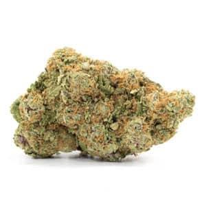 best hybrid gsc weed strain