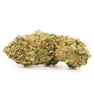 sour diesel sativa strain