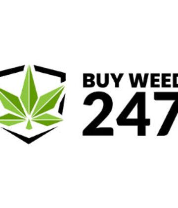 BuyWeed247 Bulk Online Dispensary