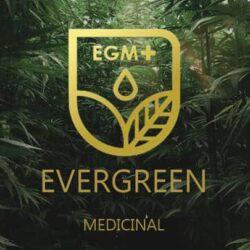 evergreen medicinal review