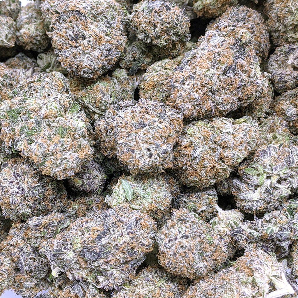 animal mints pound