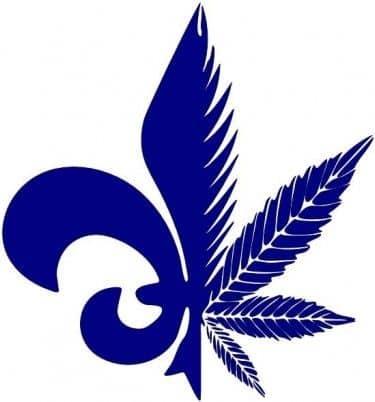 quebec cannabis seeds qcs