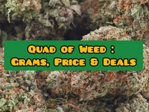 the guide to quad of weed: price, grams. deals
