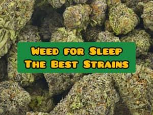 weed for sleep, best strains