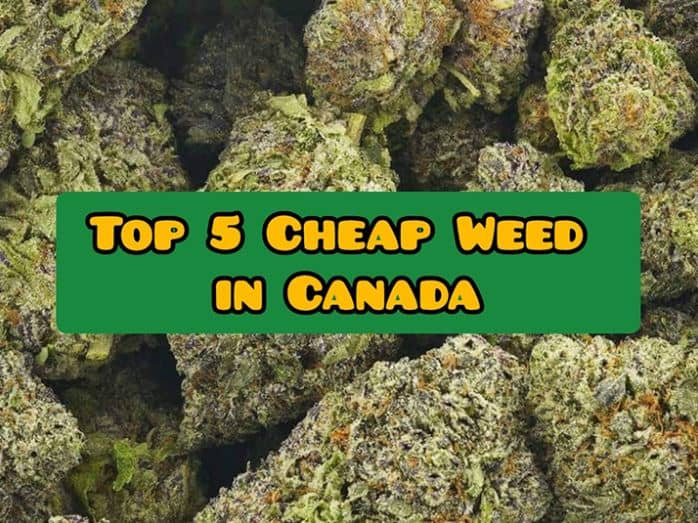 top 5 cheap weed canada