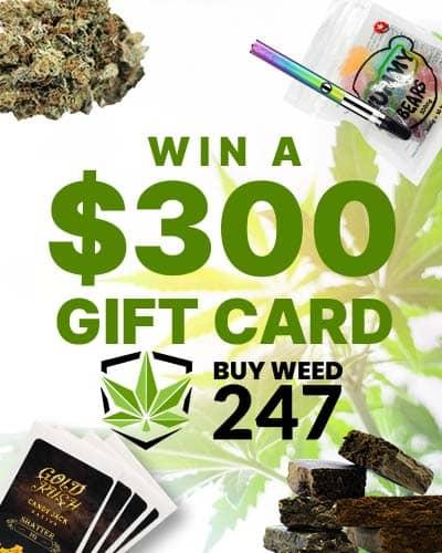 buyweed247 contest